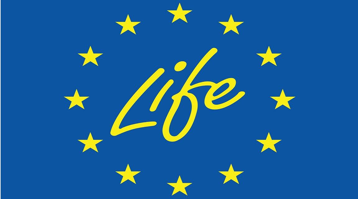 La Unión Europea promueve una Europa verde y climáticamente neutra