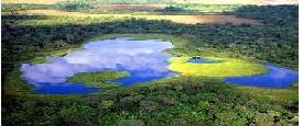 Brasil_Pantanal