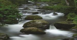 La cuenca del río Savegre, Costa Rica, declarada reserva de la biosfera