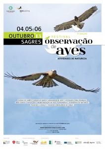 Sagres_Birdwatching