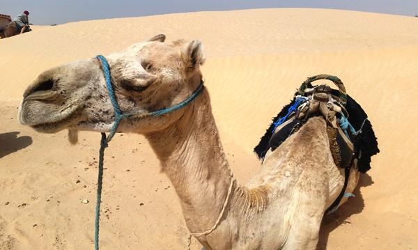 Una escapada de aventura por los desiertos de Túnez