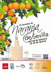 Sevilla_naranjas